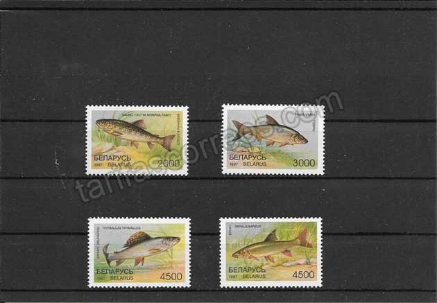 enviar paquetes desde - valor sellos filatelia animales acuáticos de bielorrusia