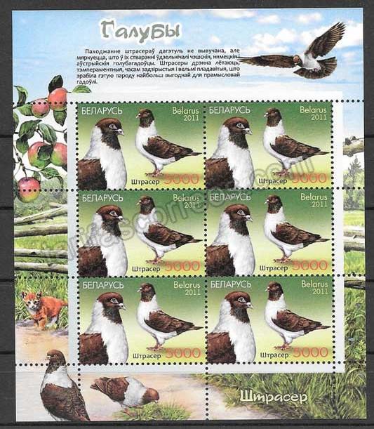 fauna - palomas 2011