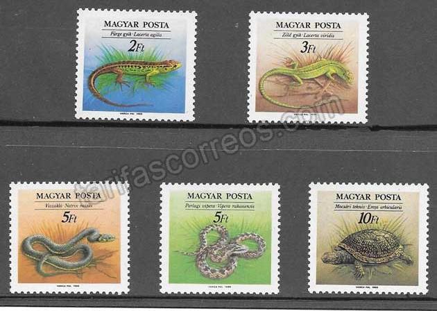 enviar paquetes desde - valor sellos fauna Hungría 1989