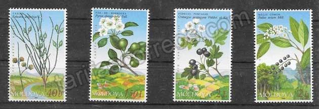 Filatelia sellos flores silvestres del año 2004